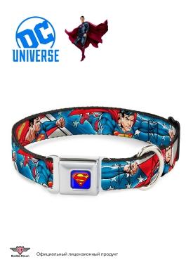 """Buckle-Down ошейник для собак с металической застёжкой """"Супермен полет"""" мультицвет"""